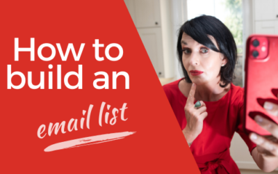 [VIDEO] How to Build an Email List FAST and FREE – My Secrets to Growing my Email List to 25,000 Subscribers